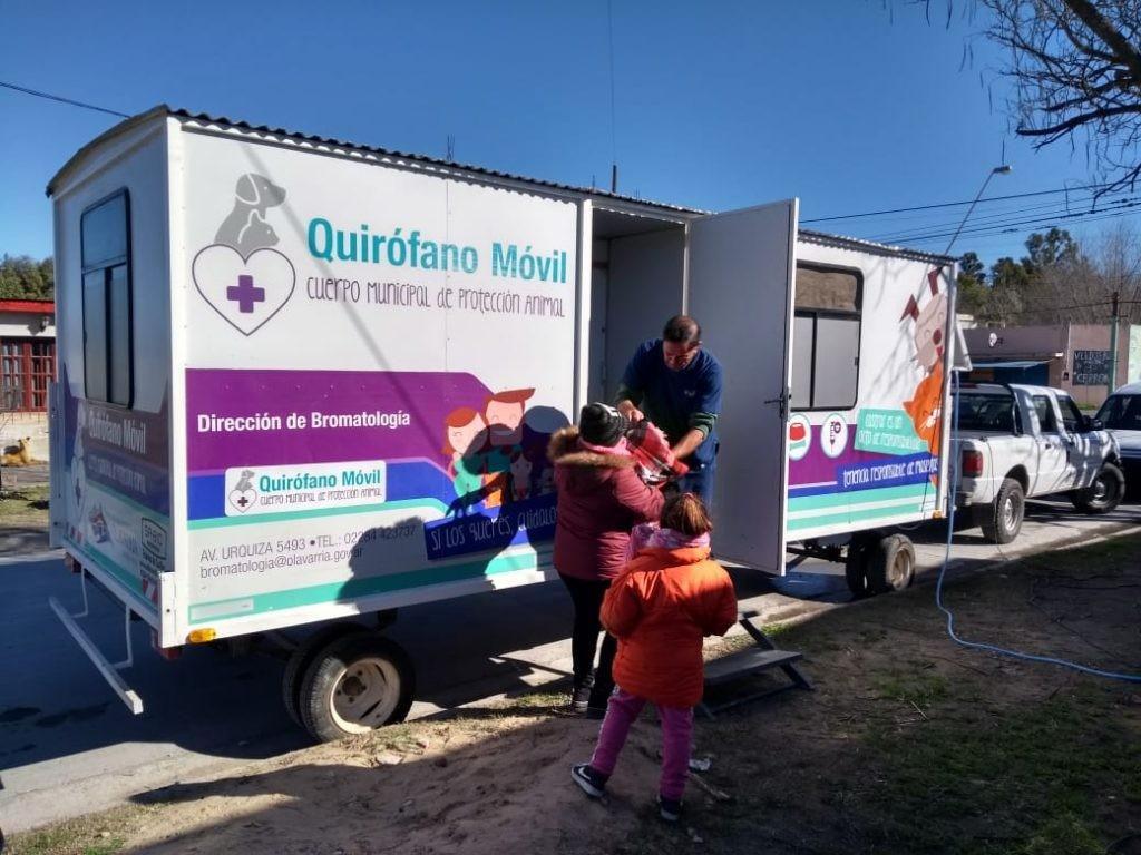 El Quirófano Veterinario Móvil en la quinta Buglione