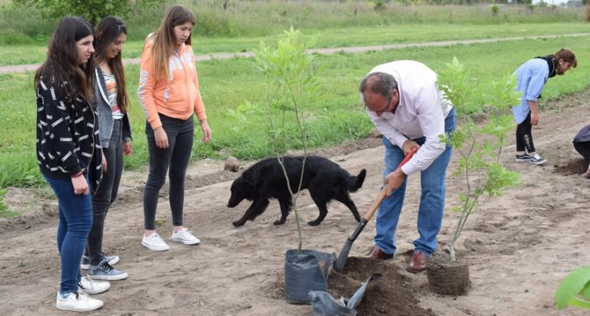 General Alvear: Se plantaron árboles sobre la avenida 9 de Julio
