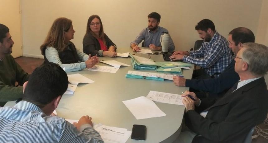 Colectividades, ARA San Juan y 'Rosita' Muia serán protagonistas del HCD este jueves
