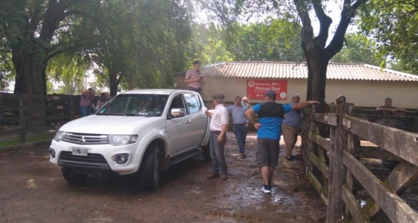 Gran remate en la Sociedad Rural de Olavarría