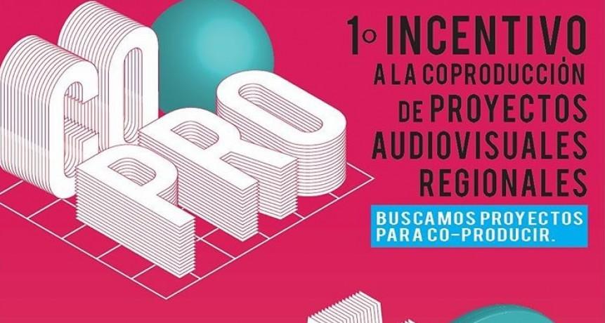 Universidad Pública dará incentivos a producciones audiovisuales de Olavarría, Azul, Quequén y Tandil
