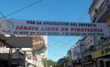 Zárate: Polémica en el HCD por proyecto de prohibición de pirotecnia