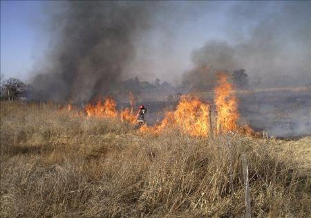 Incendio de pastos y pirotecnia
