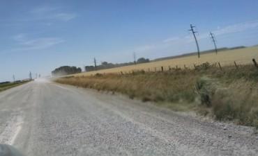 La empresa Loma Negra se refirió a la reparación del camino de acceso a L'amali