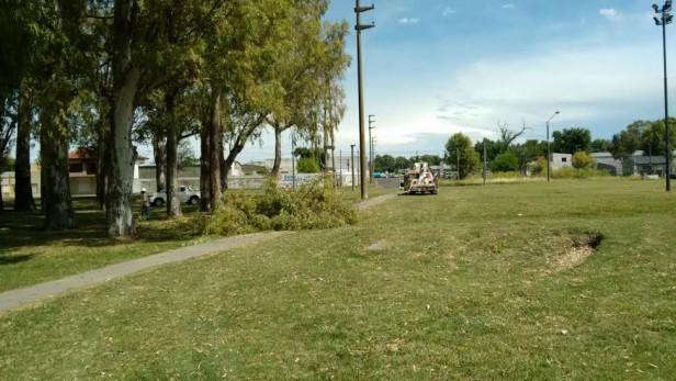 Una planta que cayó en la zona del cosmódromo dejo sin luz un sector de la ciudad