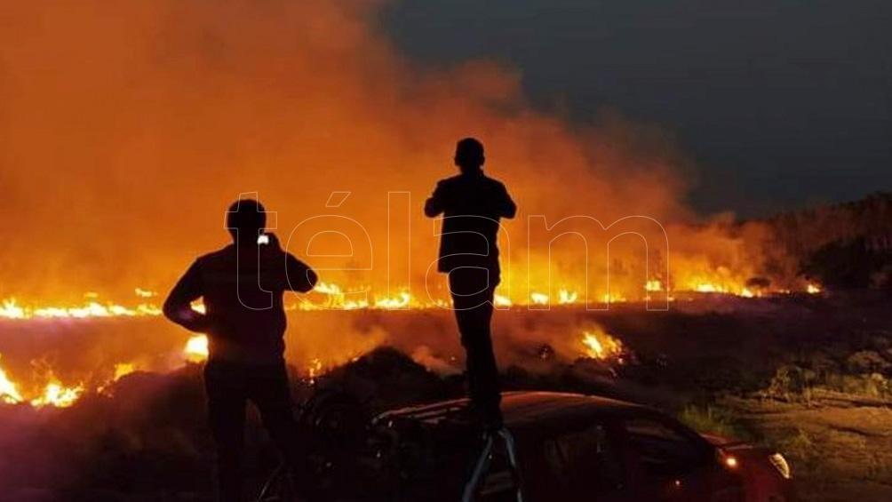 Es ley el proyecto que busca evitar la especulación con tierras incendiadas