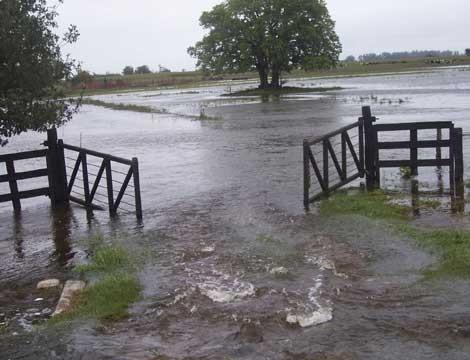 700.000 hectáreas inundadas en Bolívar, Pehuajó y Carlos Casares