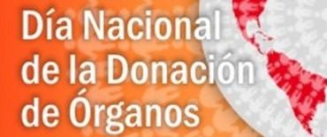 Se celebra el Día Nacional de la Donación de Órganos y Tejidos
