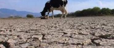 Diputados opositores impulsan un proyecto de seguro agrícola no obligatorio y subsidiado