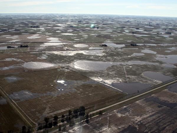 Declararon la emergencia agropecuaria en 15 partidos bonaerenses