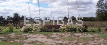 Vandalismo en Espigas