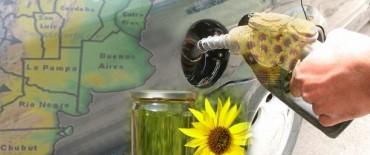 Kicillof se mete también en el negocio del biodiésel