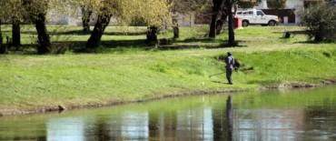 Azul: se está trabajando en el mantenimiento de los espacios públicos