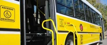 Transporte: legislación para incluir discapacitados motrices