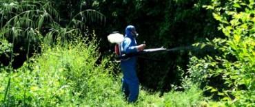 Dengue: culmina la fumigación en Barrio Luján y pasan a fumigar cerca de Microcentro