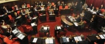 Ley Telechea: el Senado dio media sanción para limitar atribuciones a Concejos Deliberantes