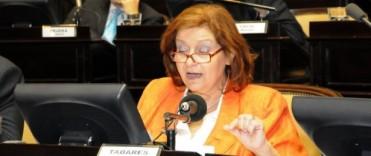 Alicia Tabarés no ingresó al Consejo General de Educación.