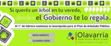El 1° de febrero comienza la inscripción para el Plan de Arbolado Público