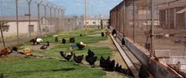 Unidad 37 de Barker, una cárcel productora