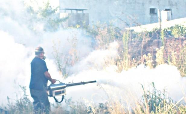 Dengue: se continúa fumigando en la zona aledaña donde fueron hallados los mosquitos adultos de Aedes