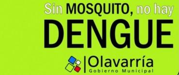 Dengue: hallaron nuevas larvas del mosquito, pero indican buenos resultados de prevención