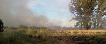 Los bomberos nuevamente tuvieron que sofocar varios incendios de pastos