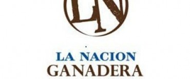 """La Nación Ganadera: """" Olavarría capital de ganadería de la provincia de Buenos Aires"""""""