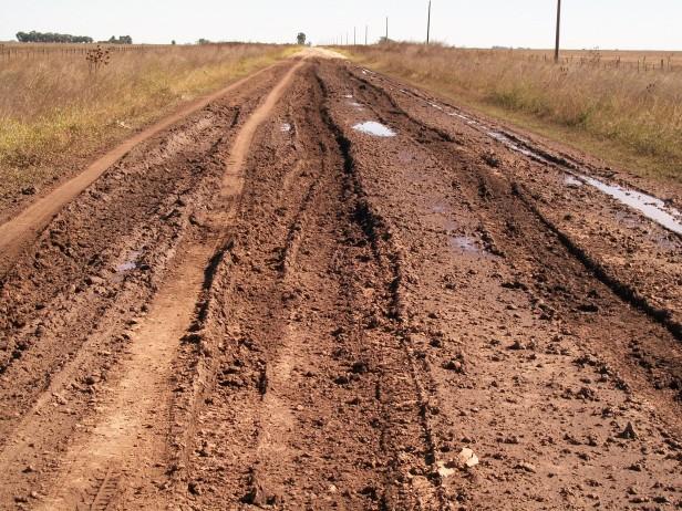 El Gobierno Municipal solicitó al Juzgado de Faltas sanciones para productores rurales