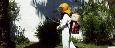 Dengue: el trabajo sostenido permite tener al Aedes focalizado en un sector de la ciudad