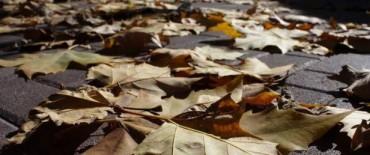 Olavarría y el centro de la provincia tendrán un otoño 2013 Estándar
