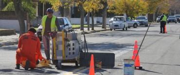 El Gobierno Municipal avanza con la señalización horizontal en calles