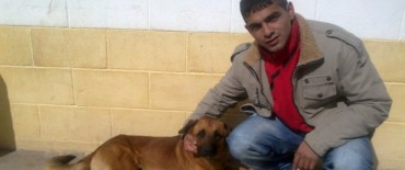 Esterilización de mascotas en la Unidad Nº2 de Sierra Chica