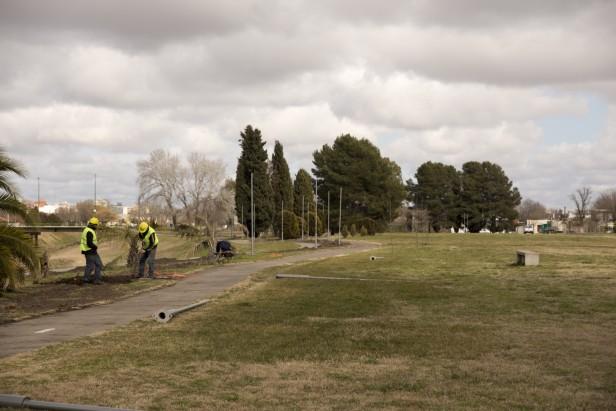 """Con """"Agapornis"""" se inaugura en septiembre la iluminación del Parque Cerrito"""
