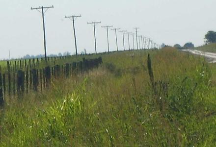 Continúa sin electricidad, gran parte de la zona rural