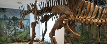 El Museo de las Ciencias con variadas propuestas